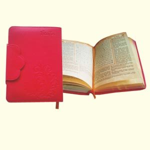Syaamil Quran Azalia Yasmina Agenda